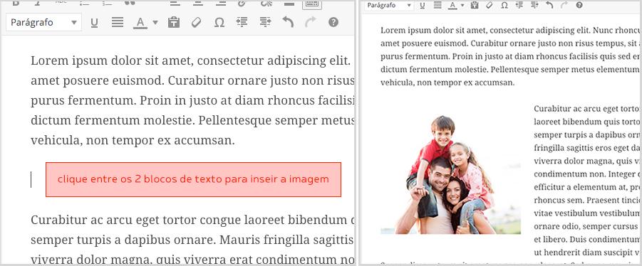 insercao-imagem-bueno-sites-wordpress-3